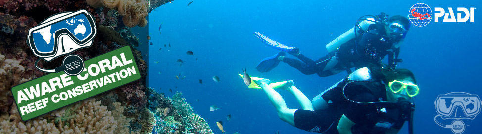 AWARE Coral Conservation Course