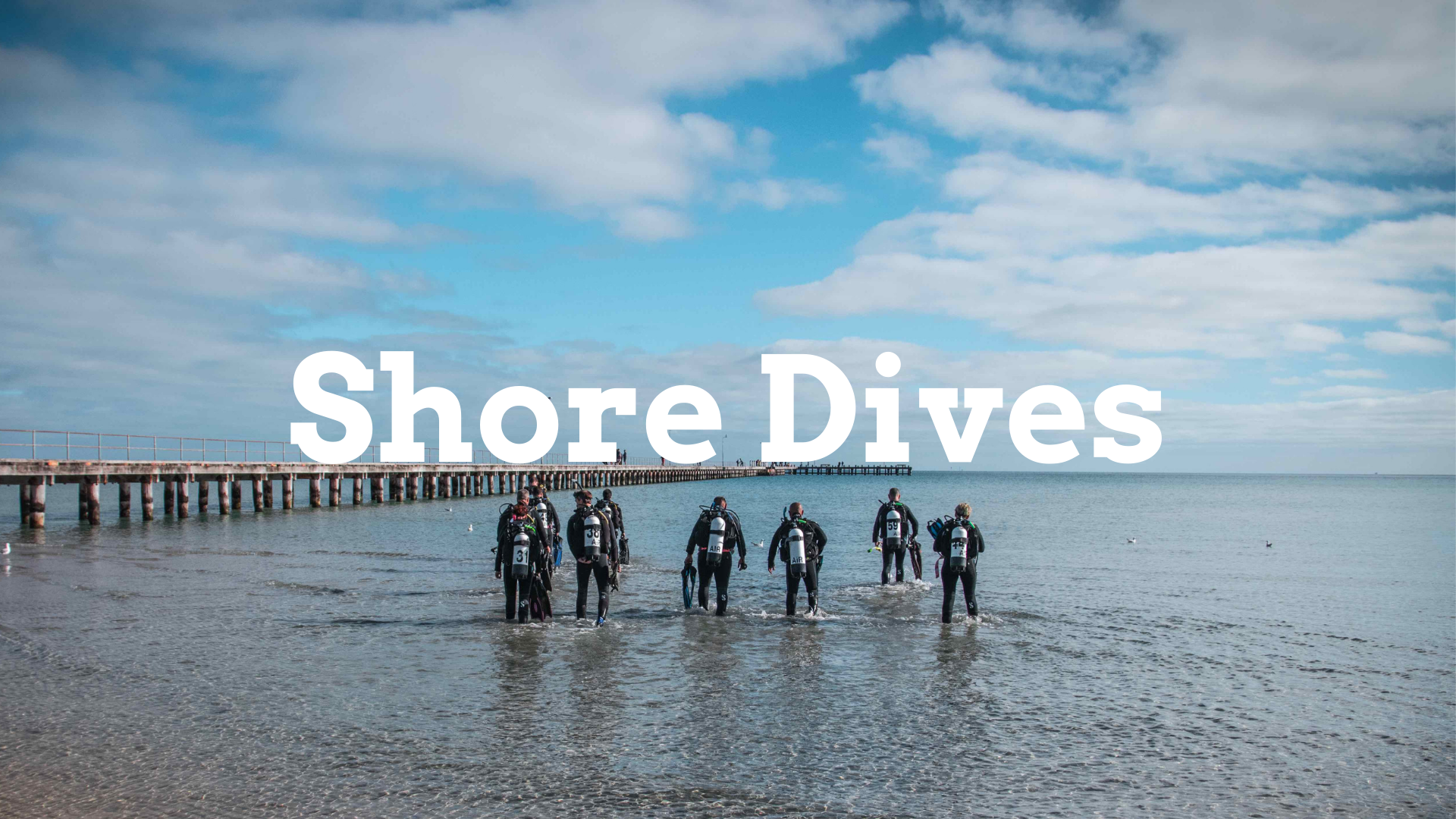 Melbourne Shore Dives